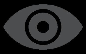 vp-vision